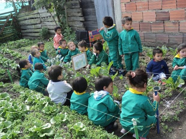 El huerto en el jard n infantil mucho m s que un huerto for Aprendemos jugando jardin infantil